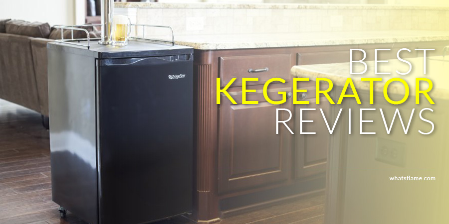 Top 10 Best Kegerator | 2017 NEW Reviews and Guide